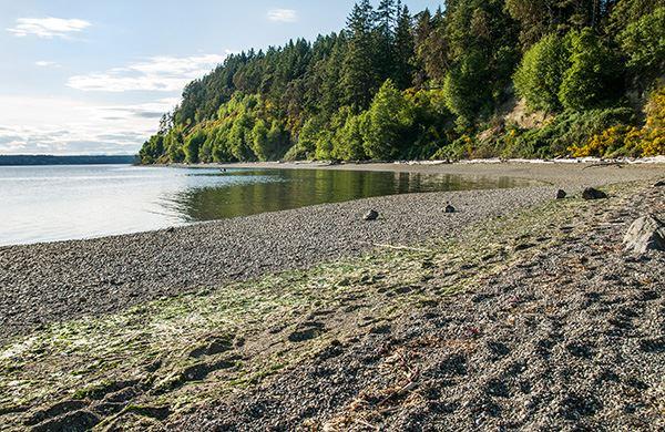 Joemma Beach State Park   Washington State Parks and
